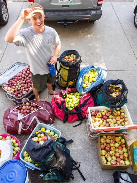 Photo from fallen fruit's website shows a urban gatherer that collected 500lbs of apples off of publicly available trees