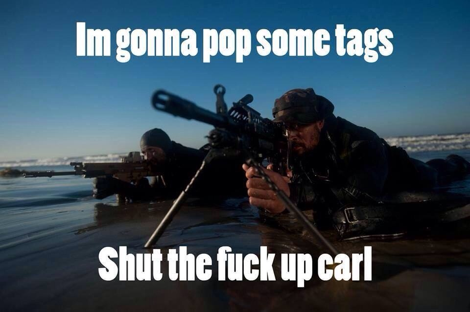 carl8 carl military meme laststandonzombieisland