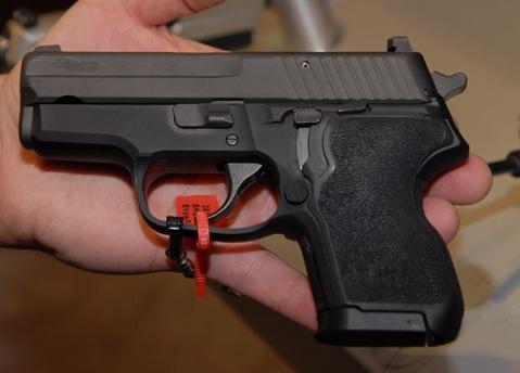 palm gun p224