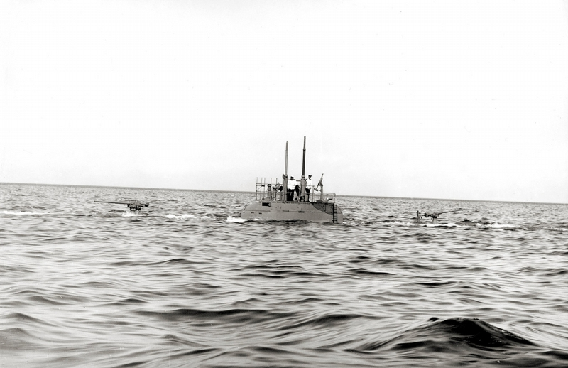 Pantera submerging.