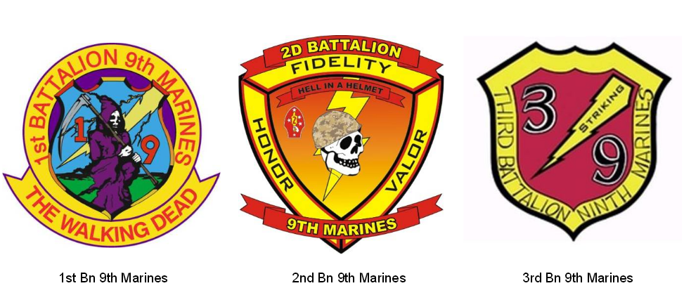 2015 USMC Patches and Insignia | laststandonzombieisland
