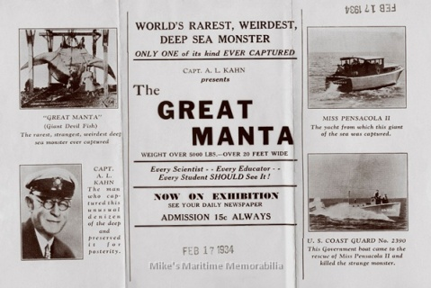More on the Manta!