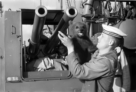"""Sailors of the Soviet cruiser """"Red Caucasus"""" with the ship's pet bear"""