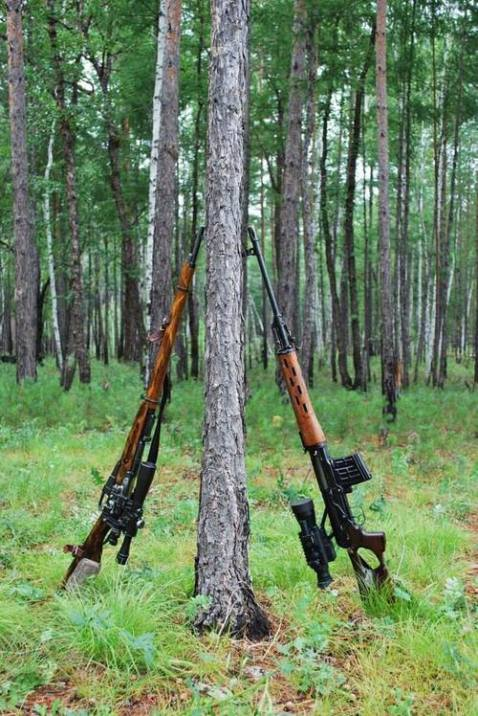 the svd right replaced the various models of mosin nagant sniper rifles left
