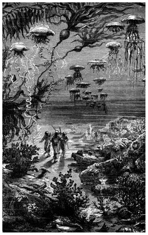 illustration-Hetzel-editions-Twenty-Thousand-Leagues-inkbluesky