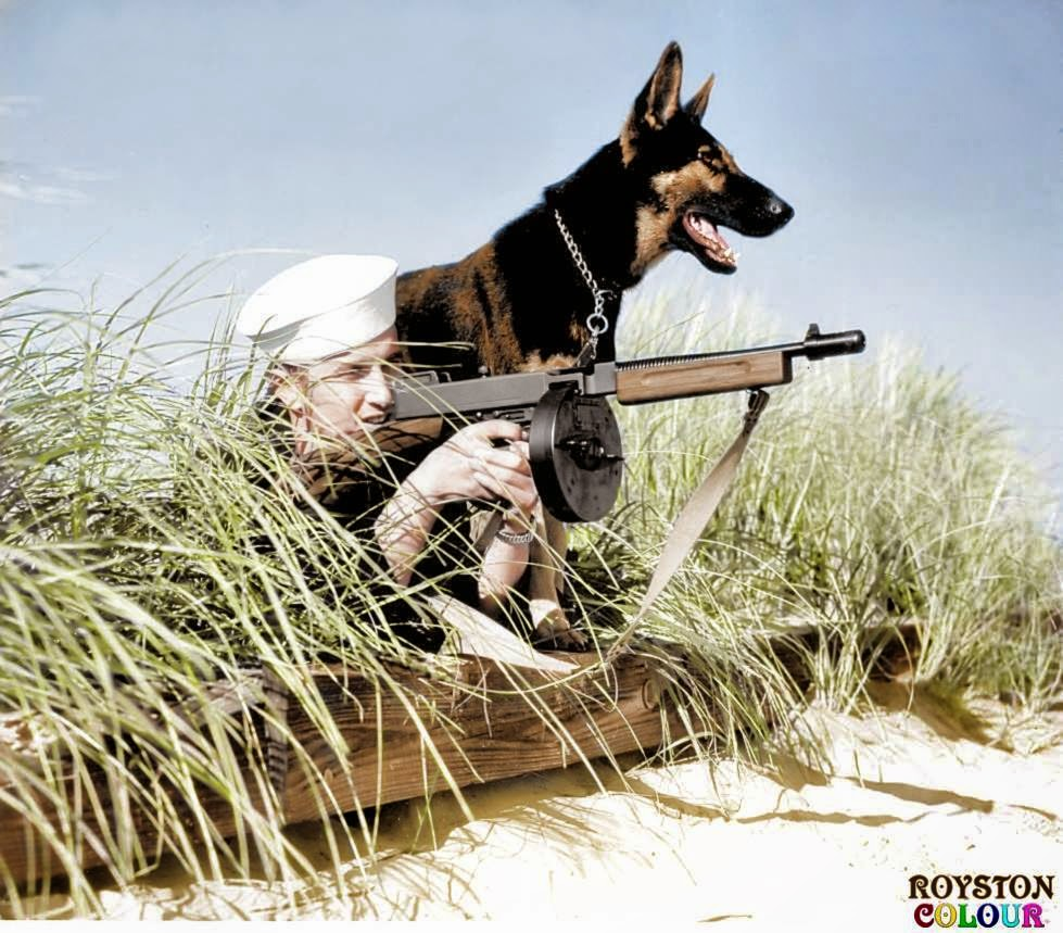 Dog Beach Patrol', (possibly on Parramore Beach, Virginia, US. October 1943). (Source - United States Coast Guard - Photo No.726. Colorized by Royston Leonard from the UK)