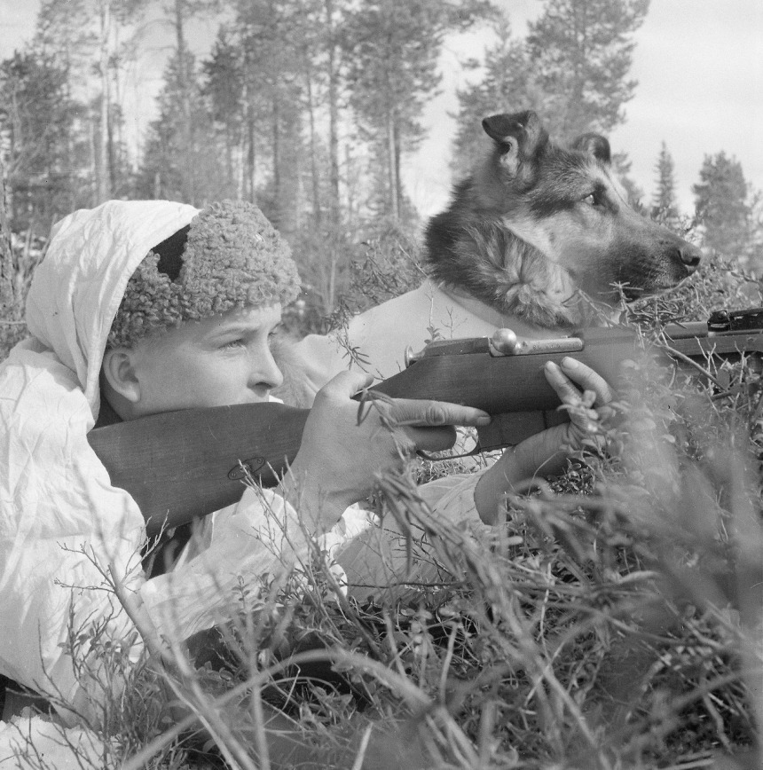 Finnish soldier and dog in position near Kiestinki, 25 April, 1942, note the Mosin rifle