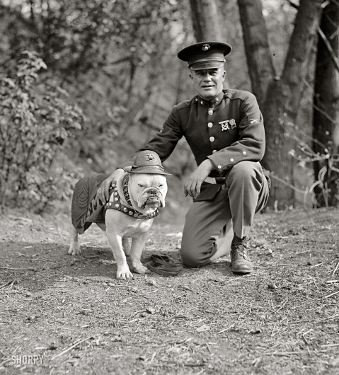 "1925. ""Sgt. Jiggs."" The Marine Corps mascot in Washington, D.C., with an actual Marine. National Photo Company Collection glass negative"