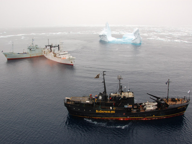 PHOTO CURTESY OF SEASHEPHERD.ORG -- Japanese Whaling Vessel Kaiko Maru Confronted by Sea Shepherd 12 February 2007
