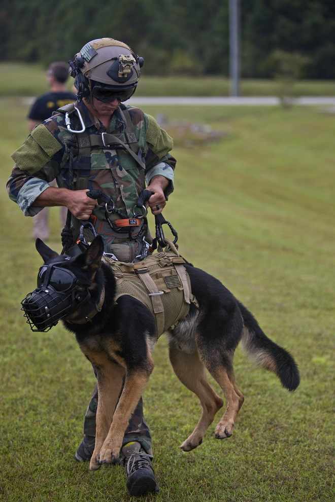A U.S. Marine with Marine Raider Regiment, carries his multipurpose canine during special patrol insertion/extraction training at Stone Bay, Camp Lejeune, N.C., Sept. 23, 2015. Marine Light Attack Helicopter Squadron 167 Marines flew from Marine Corps Air Station New River to assist MARSOC with the training. (U.S. Marine Corps photo by Lance Cpl. Austin A. Lewis/Released)