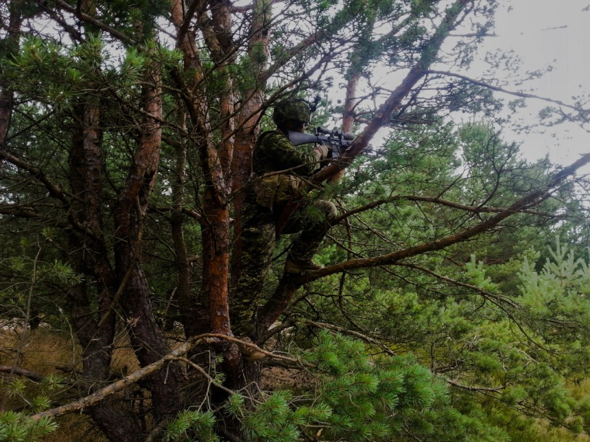 Canadian sniper from 3 R22eR provides fire support to the paratrooper company during an exercise held on August 1st, 2015, in Drawsko Pomorskie Training Area, in Poland