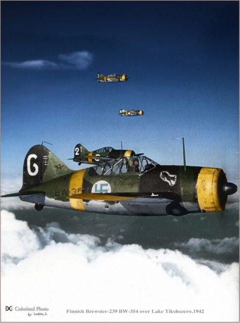 Finnish Brewster-239 BW-354 over Lake Tikshozero 1942