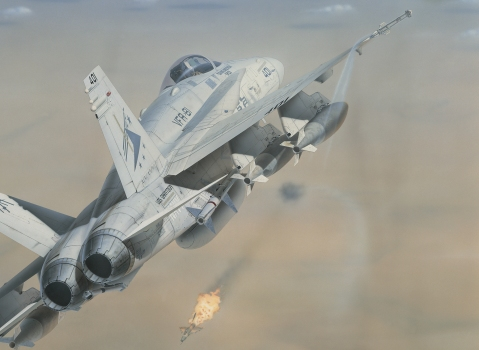 The MiG kill of Cdr. Mark Fox during Desert Storm. An FA-18C of VFA-81. by mark styling