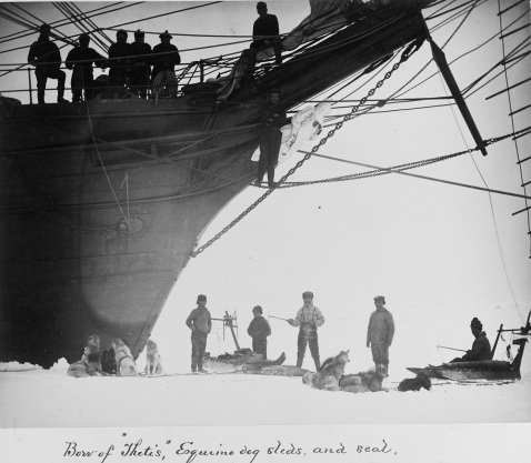 Bow of the USS THETIS, Eskimos with their dogs, sleds, and a seal, during the Greely relief expedition in Greenland, May-June 1884. Description: Collection of Mr. Ray Spear, 1933 Catalog #: NH 1724