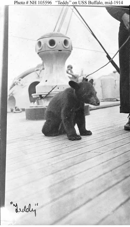 Teddy, a ship's mascot, on the ship's forecastle circa mid-1914 during the 1914 Alaskan Radio Expedition. Teddy, probably an Alaskan bear cub, is also shown posing with one of the ship's divisions in Photo # NH 105464. Note the ship's capstain in the background. Collection of Admiral Montgomery M. Taylor, donated by Louisa R. Alger, 1962. U.S. Naval History and Heritage Command Photograph. Catalog #: NH 105596.