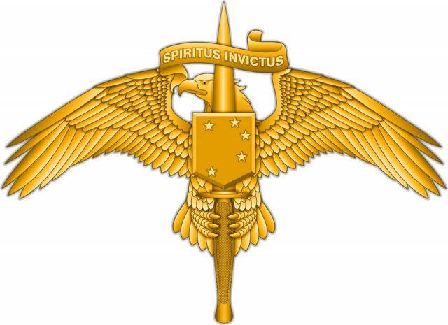 USMC introduces Marine Special Operator insignia for Raiders