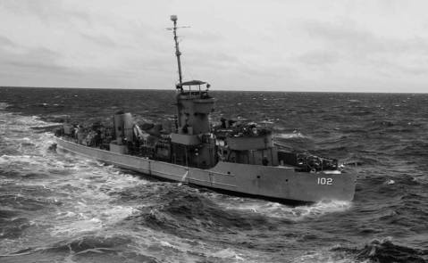lcs-102