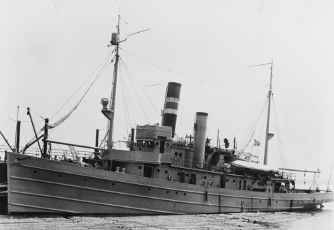 USS AVOCET (AM-19) at Baltimore, Maryland, 28 September 1918. Catalog #: NH 57468