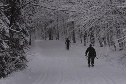 canadian-van-doos-22rgt-iceman-challenge-snow-shoe-ski-2c