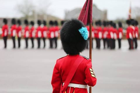 irish-guards-ireland-dress-uniform-includes-blue-plume-for-st-patrick